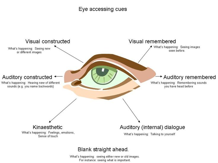 eye and brain the psychology of seeing pdf