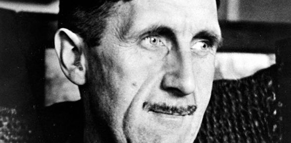 freedom of the park pdf orwell